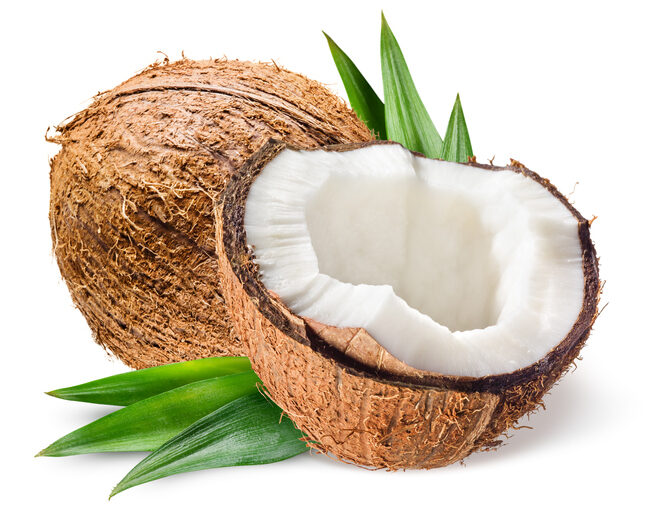 mature coco nut in 2 hales